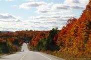 アルゴンキン州立公園の紅葉